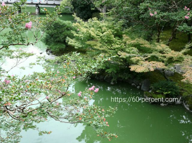 旧九條家庭園(拾翠亭)池の画像