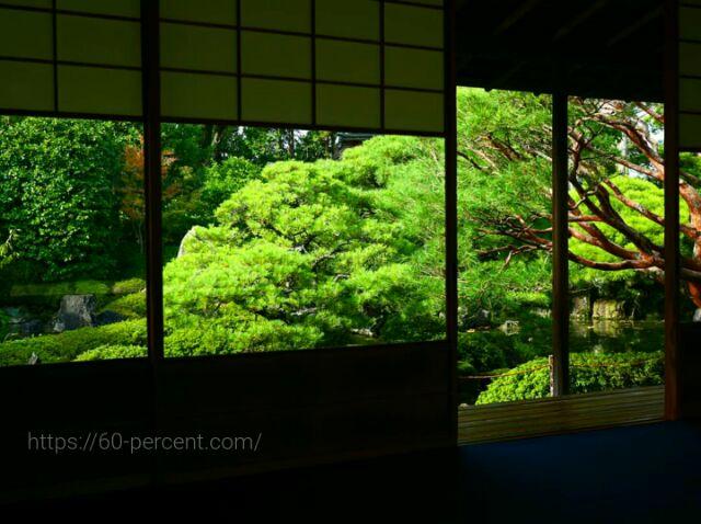 城南宮の茶室から見える庭園の画像