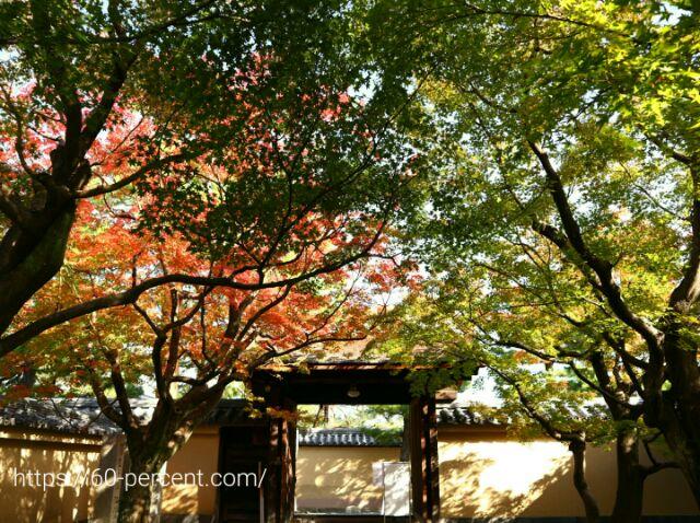 黄梅院の前庭の画像