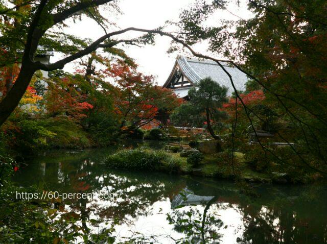 金戒光明寺の庭園の画像