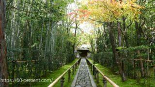 大徳寺塔頭・高桐院の参道の画像