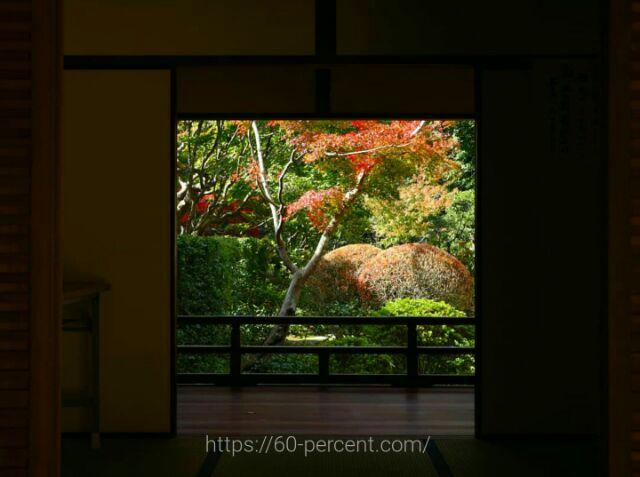 大徳寺塔頭・高桐院の玄関からみた庭園の画像
