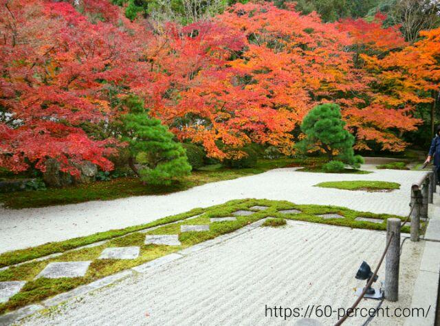天授庵の庭園の画像