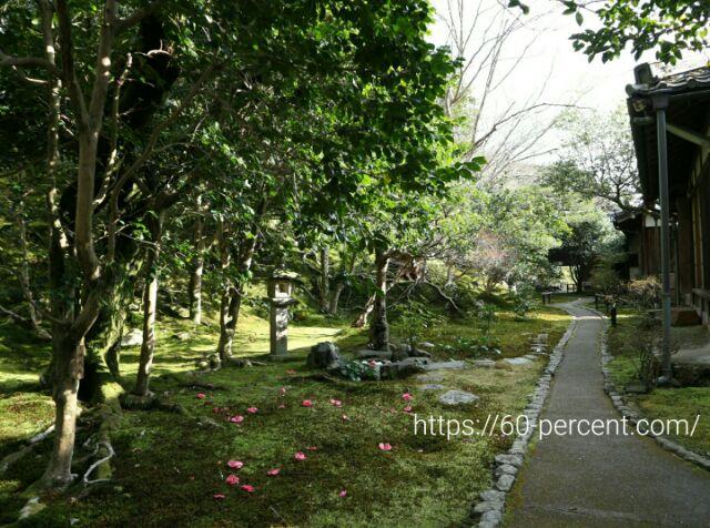 霊鑑寺の庭園の画像
