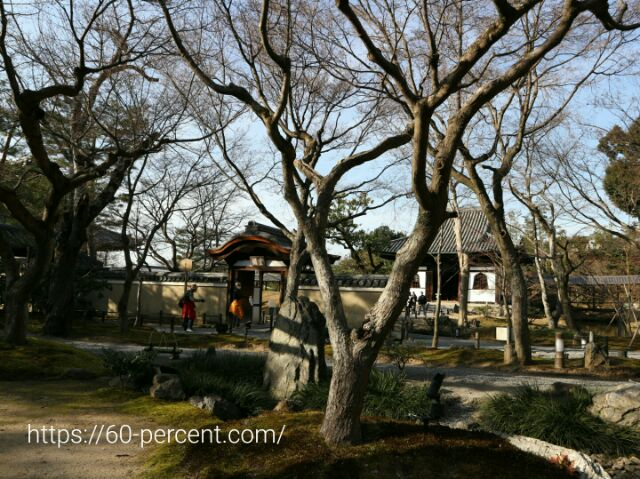 高台寺の雲居庵からの眺めの画像