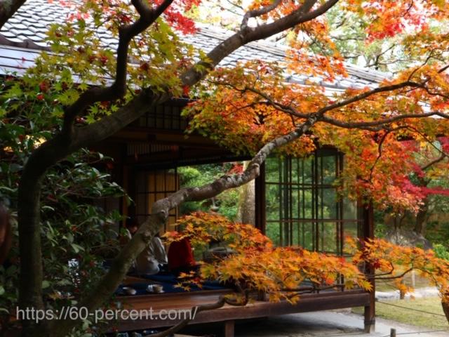 無鄰菴の庭園からカフェを覗いた画像