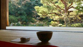 京都のお寺で頂くお抹茶