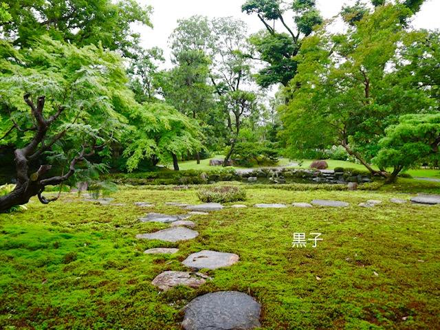 旧三井家下鴨別邸の庭園の画像