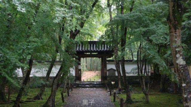 地蔵院(竹の寺)の門の画像