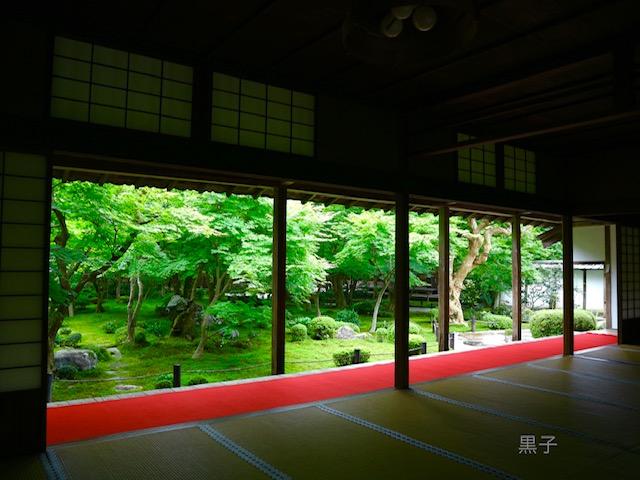 圓光寺の庭園の画像
