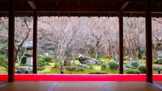 圓光寺の冬の庭園の画像