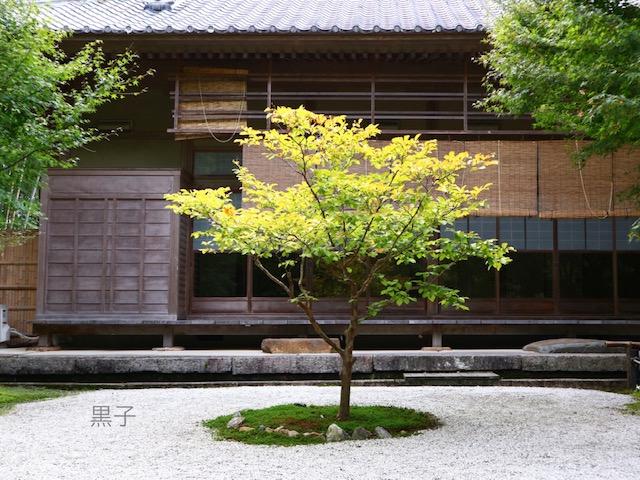 圓光寺の回遊式庭園の画像