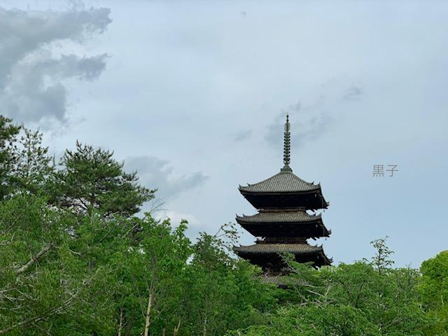 仁和寺の五重塔の画像