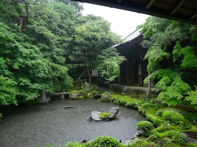 蓮華寺の庭園の池の画像