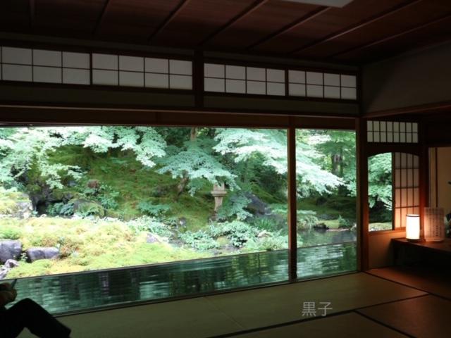 瑠璃光院の臥竜の庭の画像