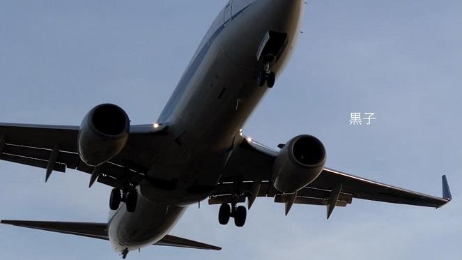 伊丹空港近くの千里川堤防で見た飛行機の画像