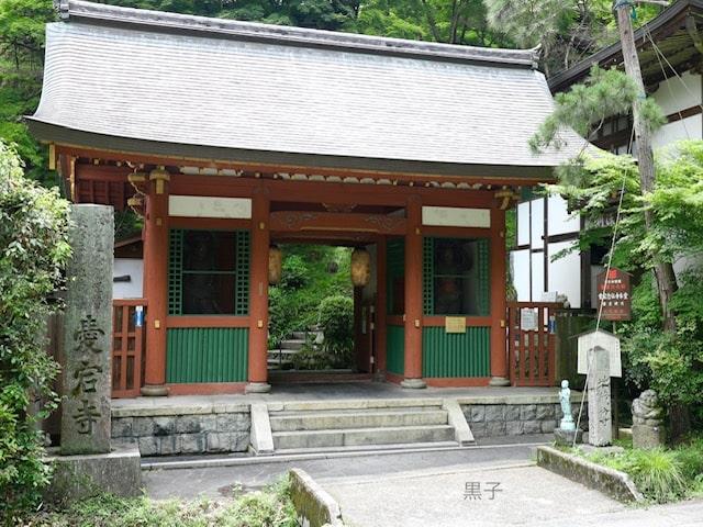 愛宕念仏寺の門の画像