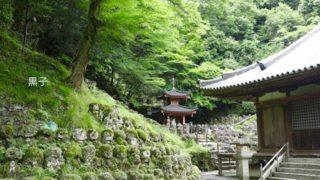 愛宕念仏寺の画像