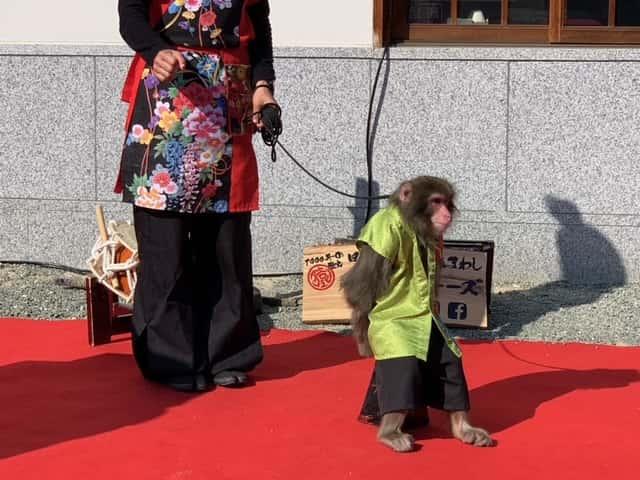 四天王寺の猿の画像